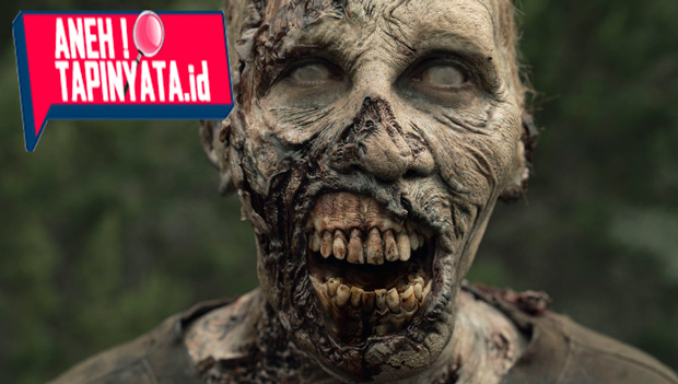Bukan Di Film Saja, Zombie Itu Eksis Lho!